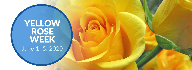 Yellow Rose Week